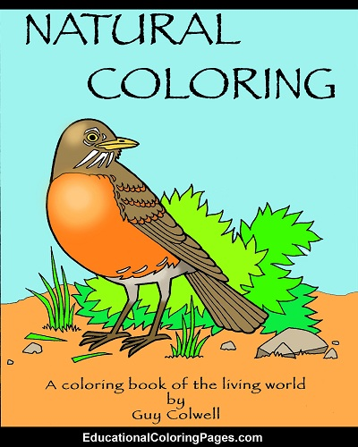 natural coloring, nature, animal coloring pages, animal coloring book