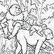 Primates Book