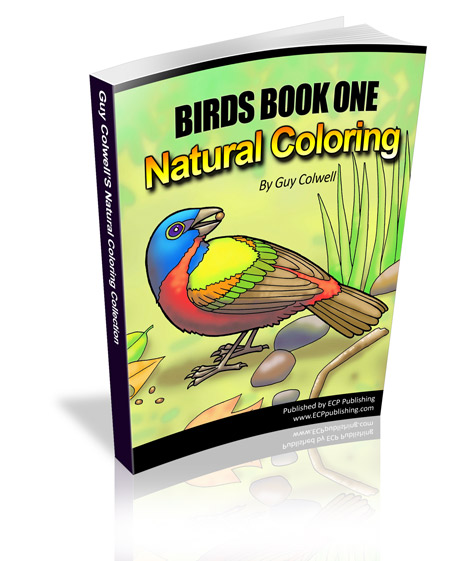 Birds1_400