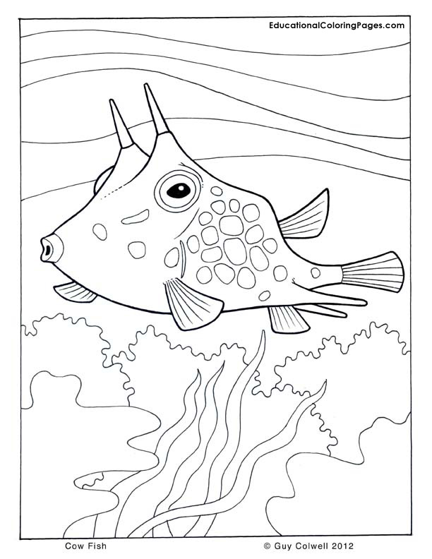 coloring pages fish ocean - photo#10