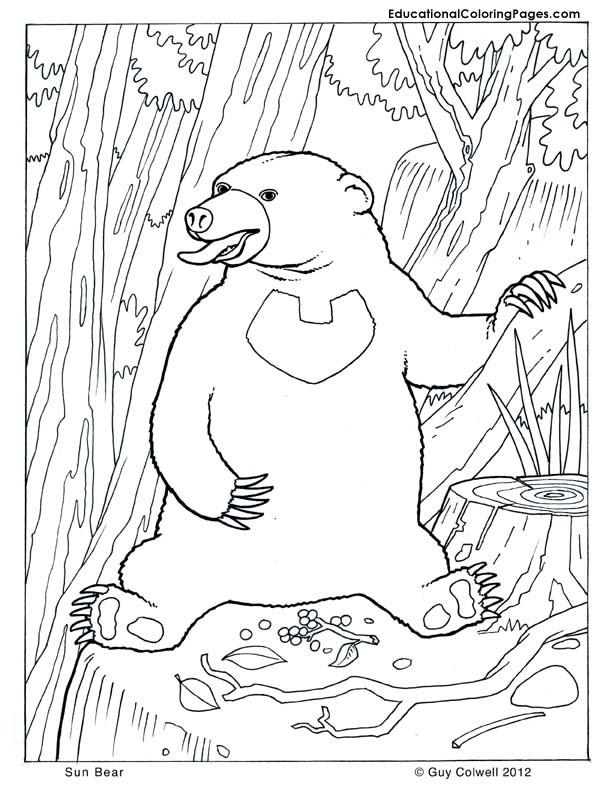 Mammals Coloring Educational