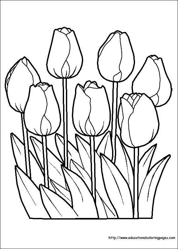 - Flower Coloring Coloring Pages Free For Kids