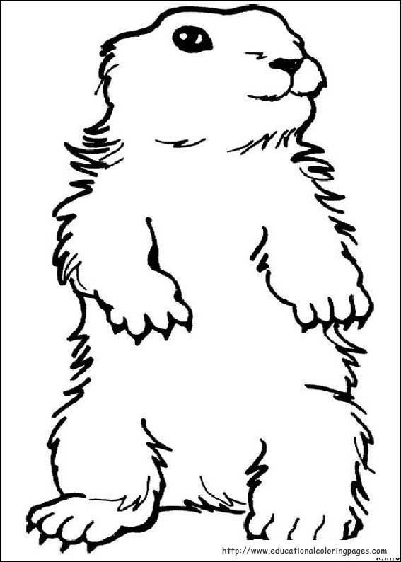 groundhog day coloring pages educational fun kids coloring pages