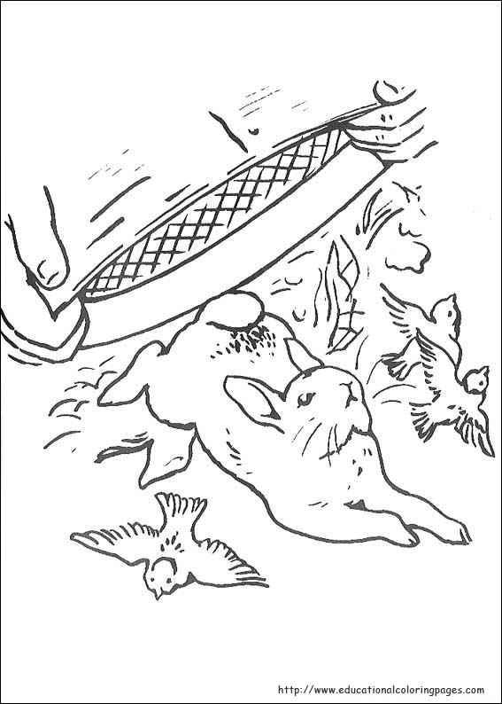 Peter Rabbit Coloring Pages Educational