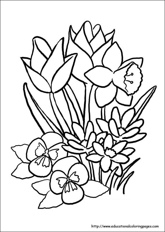 - Spring Coloring Pages Free For Kids