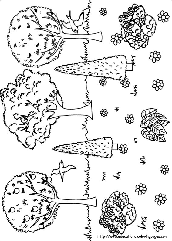 Nature Coloring Pages Educational