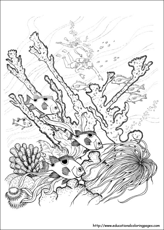 Coloring Pages For Ukg : Nature coloring pages educational fun kids and