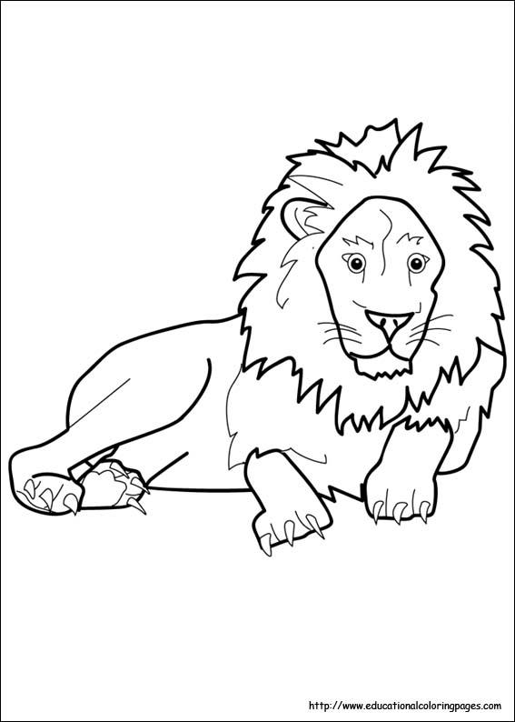 lion coloring image