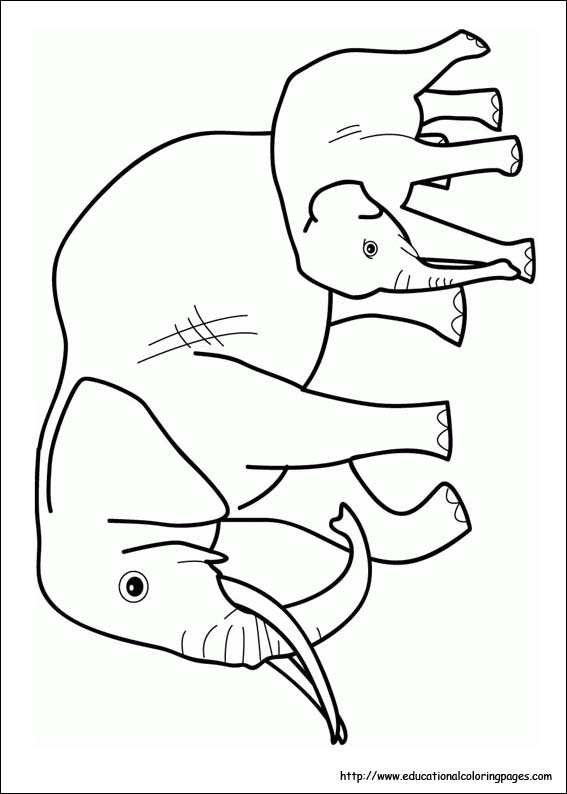 elephant coloring image