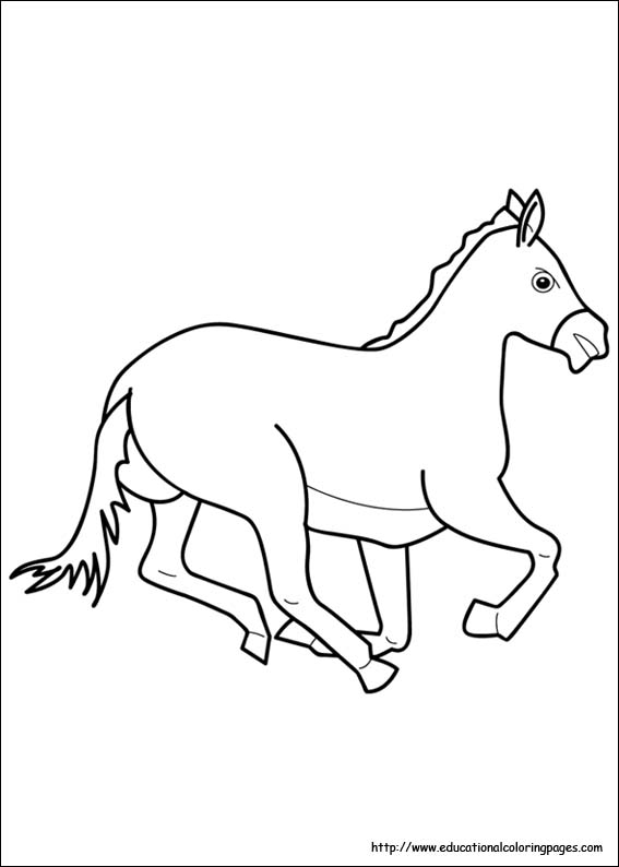 horse coloring image