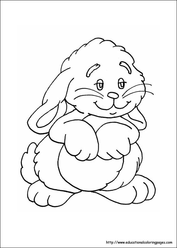 rabbit coloring image
