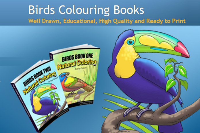 Birds Colouring Books Educational Fun Kids Coloring