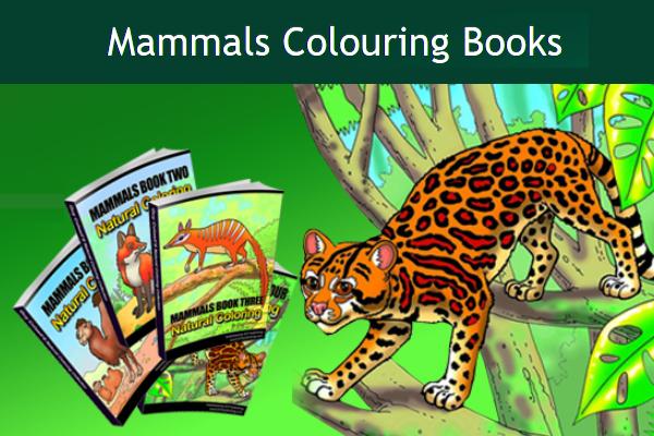 Mammals Coloring